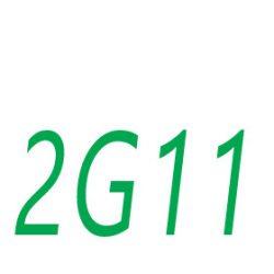 2G11 foglalat