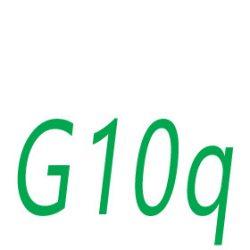 G10q foglalat