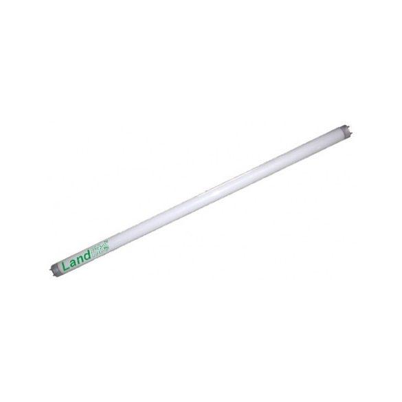 LANDLITE Hagyományos, T5, 849mm, 39W, 3100lm, 4000K fénycső (T5-HO-39W)