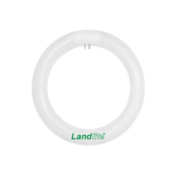 LANDLITE Energiatakarékos, G10q, 40W, 3000lm, 2700K körfénycső (CCL-40W)