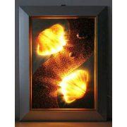 LANDLITE SHELL LIGHT-001, 2xG9 230V 25W, kagyló lámpa