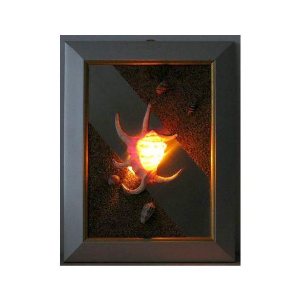 LANDLITE SHELL LIGHT-003, 1xG9 230V 25W, kagyló lámpa