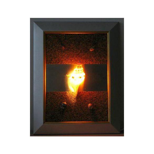 LANDLITE SHELL LIGHT-004, 1xG9 230V 25W, kagyló lámpa
